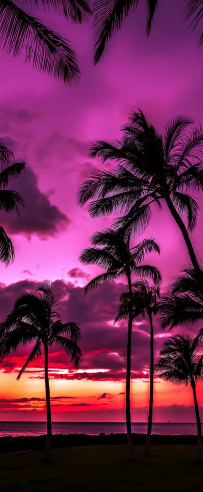 Sunset, Ko Olina, Hawaii                                                                                                                                                                                 More