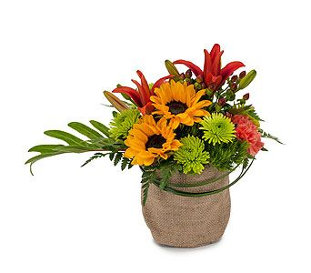 Oakland Florist, Flowers, Roses, Plants, and Gifts | Helen's Flower Shop