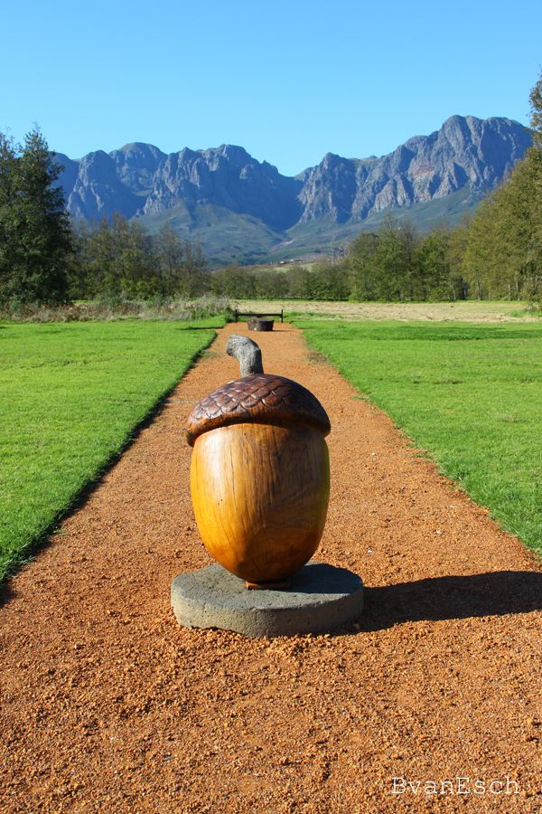 Check out the beautiful gardens at Vergelegen wine estate in Somerset West, South Africa #thingstodo
