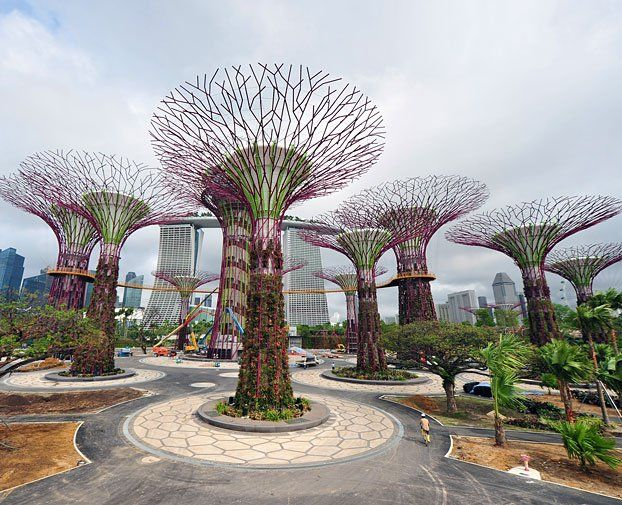 Supertrees Produce Solar Power and Collect Rainwater | Singapore