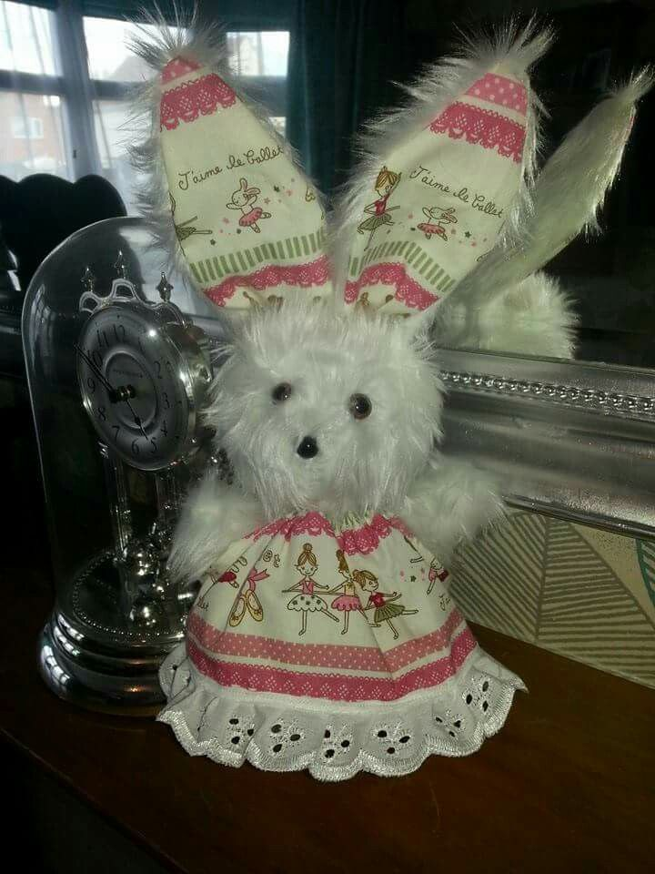 Lily's bunny