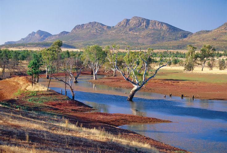 Flinders Ranges / Australia