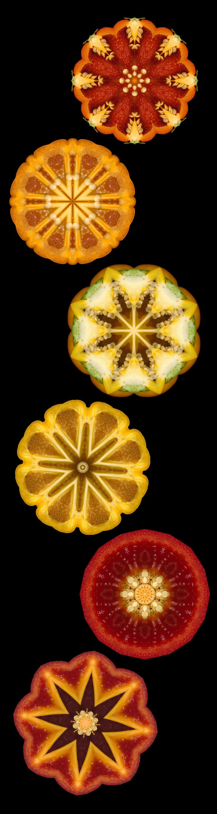 Kaleidoscans | Sash Segal | kaleidoscope images made from scanned bell peppers