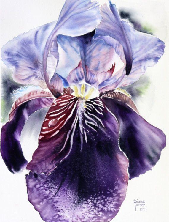 Les 25 meilleures id es de la cat gorie fleurs violet - Peinture violet fonce ...