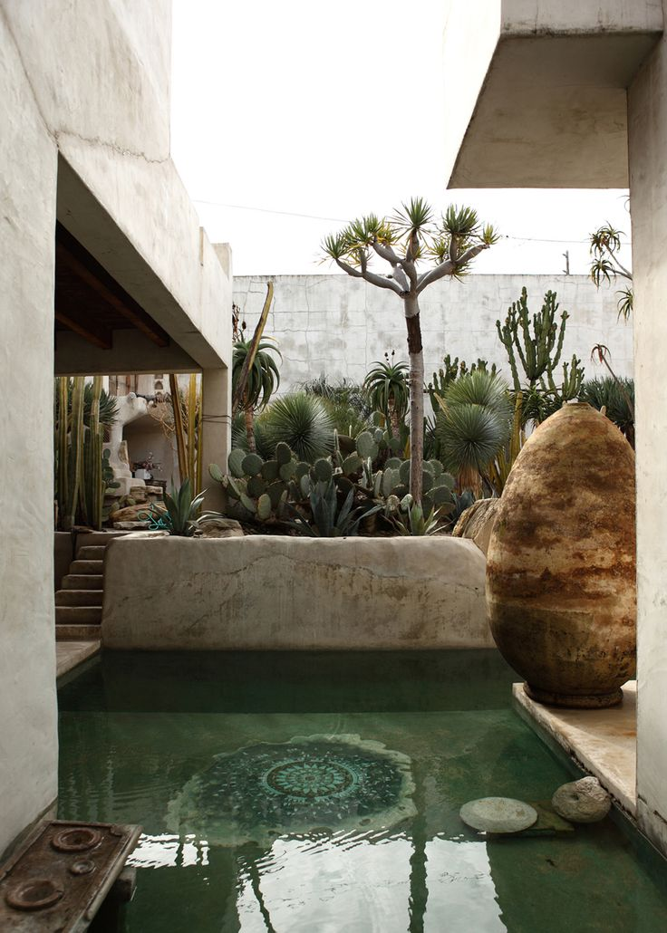 Dipping pool with cacti garden.