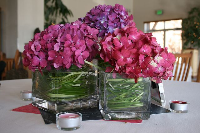 like this idea but with diff flowers  Pink/Purple Hydrangea centerpiece by StefanieStar, via Flickr