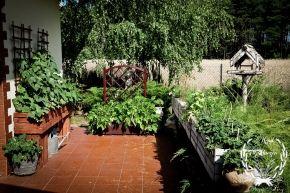 Eko - Ogródek - zielono mi...