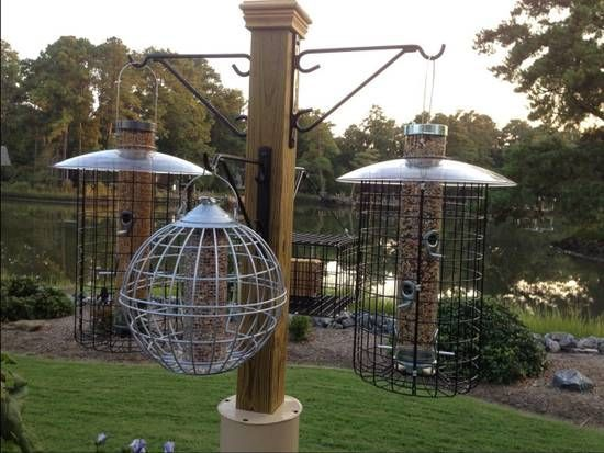 40 best bird feeders images on pinterest bird feeders for Homemade bird feeder plans