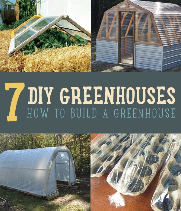 Have you ever wanted to build your own DIY greenhouse but just didn't know where to begin? Try these 7 great DIY greenhouses for easy backyard gardening ideas #diyready http://diyready.com/build-greenhouse-7-diy-greenhouses/#summerprojects