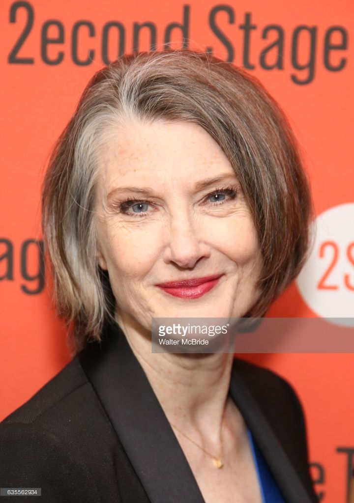 Annette O'Toole attends the Second Stage Theatre's Off-Broadway Opening Night After Party for 'Man From Nebraska' at Dos Caminos on February 15, 2017 in New York City.