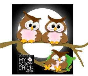 Night Owls: click to enlarge