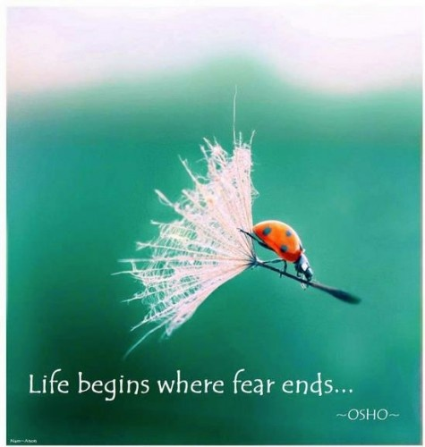What would it look like to you to put your fear behind you and take one step forward?