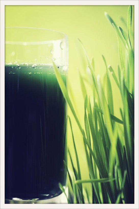 Fenouil détox | recette de jus aux propriétés détox et revitalisantes ... combiner dans un extracteur de jus à froid ► 1/2 concombre • 1/2 fenouil • 1 branche de cèleri • 1 poignée de menthe fraîche
