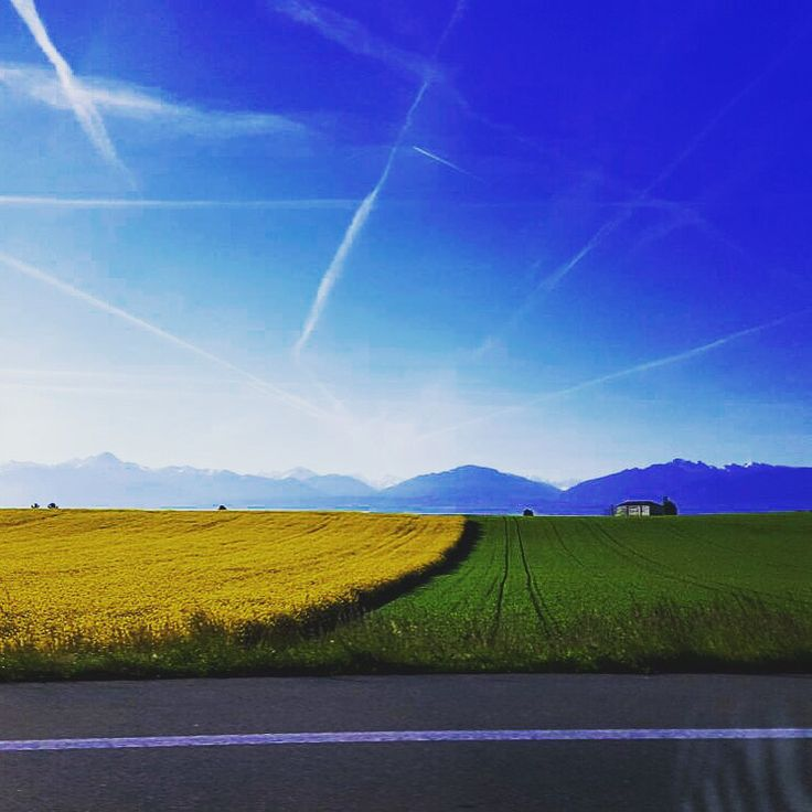 Swiss Spring Colors! (Léman area)