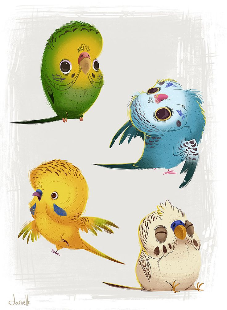 Parakeets by doingwell on DeviantArt