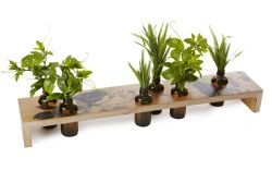 Indoor/Outdoor Table Setting