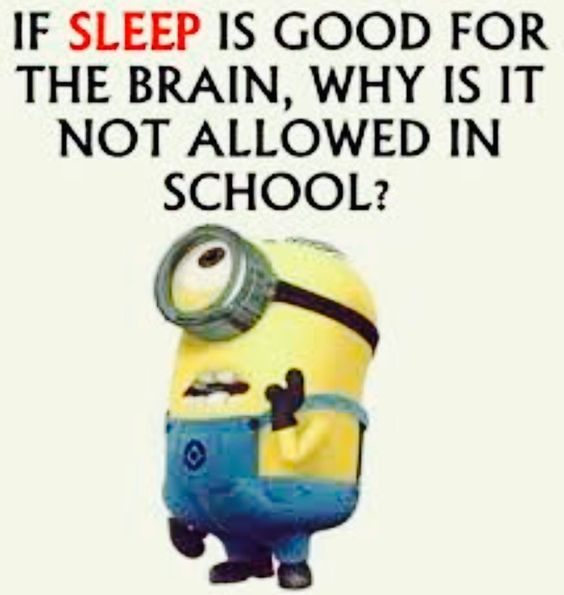 30 Funny Minion Quotes You Need To Read Funny Minion Quotes Fun Quotes Funny Funny Quotes