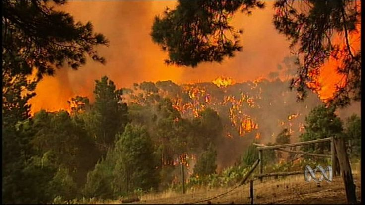 Investigate Victoria's devastating bushfires of 2009 and find out why they have been called Australia's worst ever...