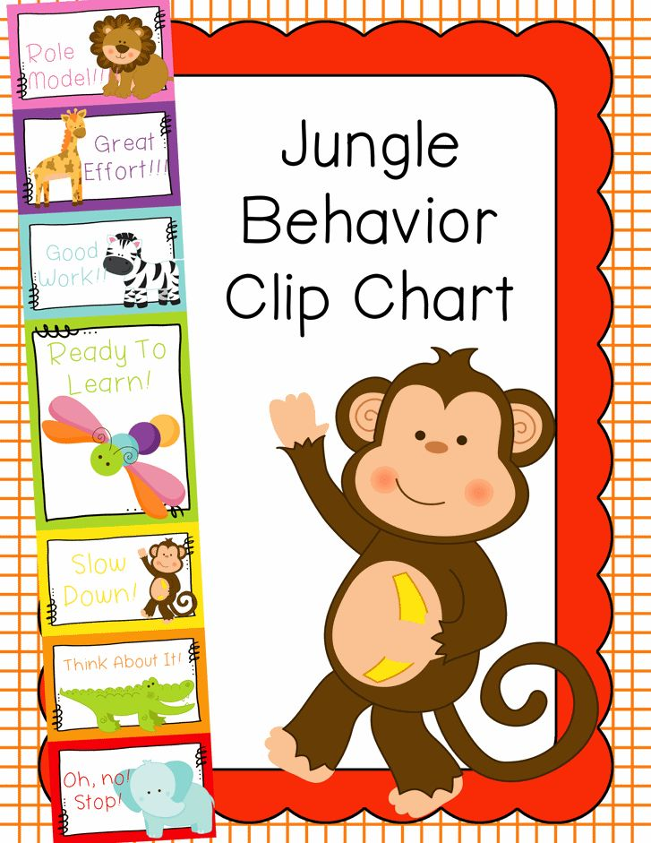 Classroom Ideas For Jungle Themes ~ Behavior clip chart management jungle animals