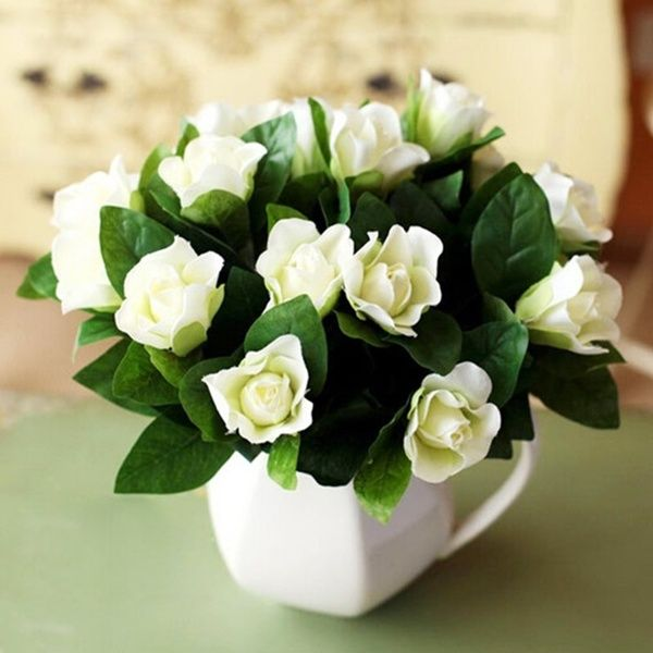 30pcs 100pcs 300pcs Gardenia Flower Seeds Cape Jasmine Jasmini Odes White Shrub Flower Seeds Garden Lyj Wish Fragrant Flowers Beautiful Flowers Fragrant Plant