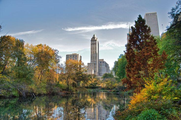 New york, central park, central park, new york, lac, gratte-ciels, ville, manhattan, manhattan Wallpaper