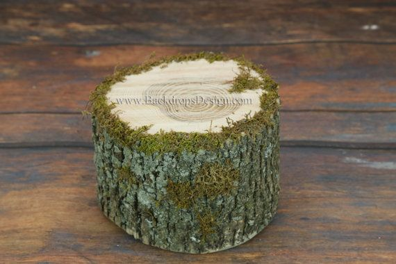 Photo Prop Stump for our Log bed Newborn photography prop hand made night stand Table on Etsy, $19.95