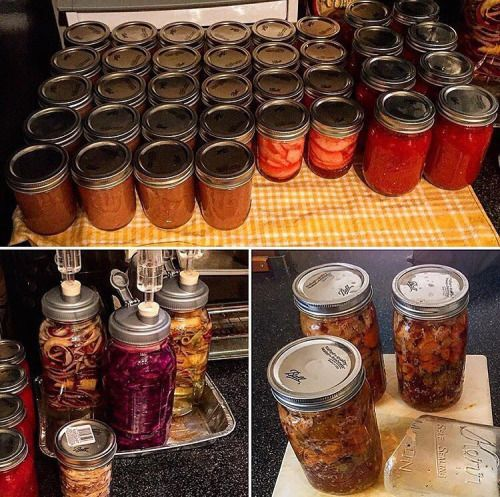 http://ift.tt/1Quu0zh   @baconparty having a productive week of fermenting and canning! Sauerkraut, applesauce, red hot apples, apple cider vinegar, and more! Lots of healthy food being preserved! 😋  #homebrew #organicgardening #canning #urbanfarming #homebrewing #urbanfarm #sauerkraut #fermentation #pickled #mead #fermented #growfood #urbanfarmer #homebrewer #gardentotable #preserving #scoby #pickling #fermentedfoods #kraut #fermenting #pickledonions #eatwhatyougrow  Also check out  ..