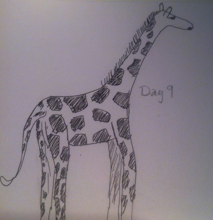 #Day9 - Giraffe, Take 1...