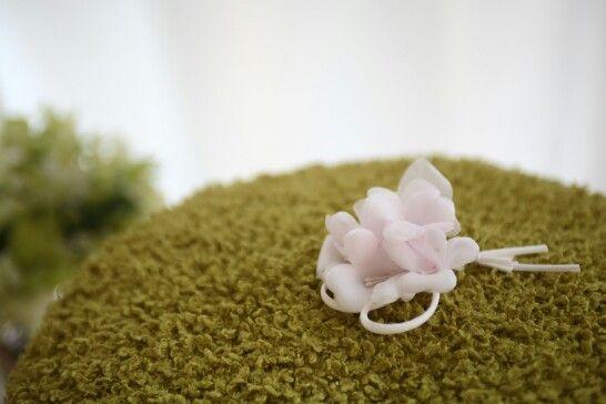 Rubovi-제비꽃