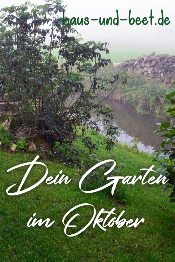 Der Garten Im Oktober Was Gibt Es Zu Tun Garten Anlegen Und