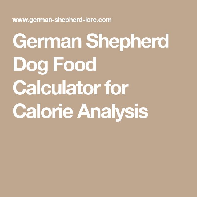 German Shepherd Dog Food Calculator for Calorie Analysis