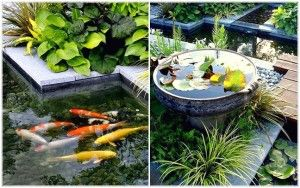Fish Pond With A Good Design And Interesting For Your Home Garden