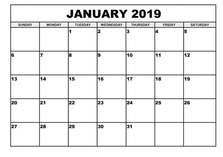 Printable Monthly Calendar January 2019 November Calendar