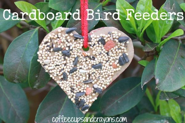 DIY bird feeders that are shaped like a heart–a great way to show your feathered friends just how much you care!
