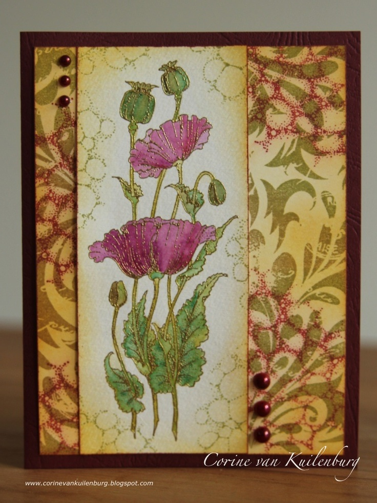Corine's Gallery: Chocolate Baroque Pretty Poppies