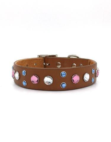 Iggy leather collar