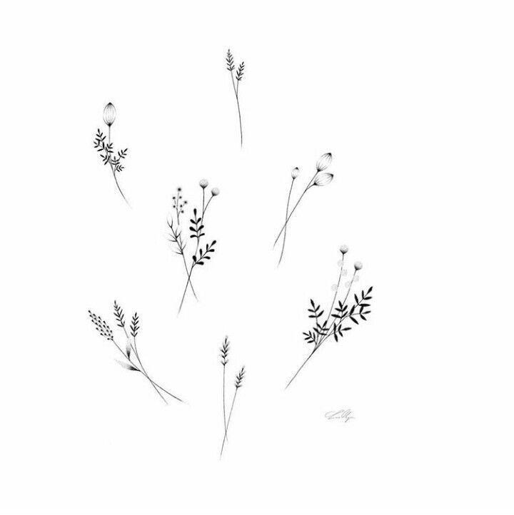 Minimalist Line Flower Tattoo: Image Result For Minimalist Flower