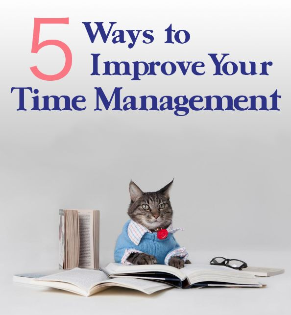 Stop wasting time! These tips will help you.