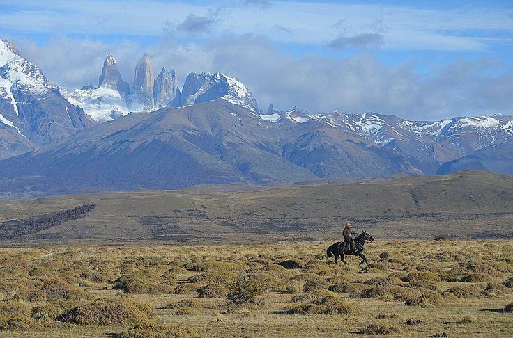 Feel free to ride a black horse in Patagonia #torresDelPaine #PatagoniaSinRepresas #NatalesSinCarbon www.sendapatagonia.com
