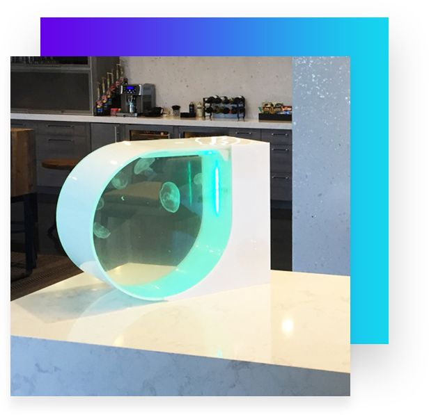 Buy a Jelly Tank, the coolest desktop jellyfish aquarium with LED light. We also have Live moon jellyfish for sale & a wide variety of jellyfish supplies.