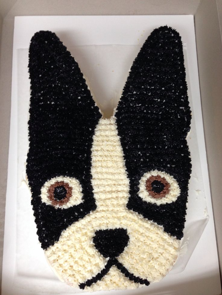 Boston Terrier Cake!