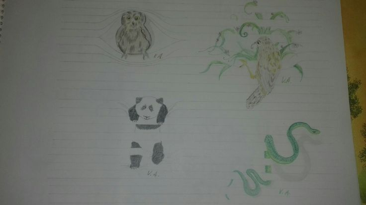 Animals in lines drawing