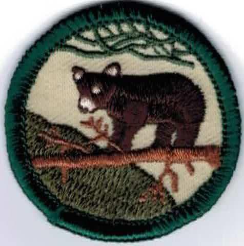 17 Best images about CO Badges on Pinterest   Arizona cactus, Girl ...