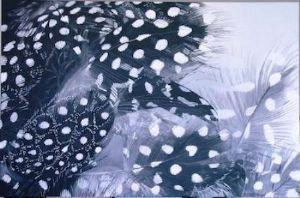 "Margie Volkwyn, ""Feathers"""