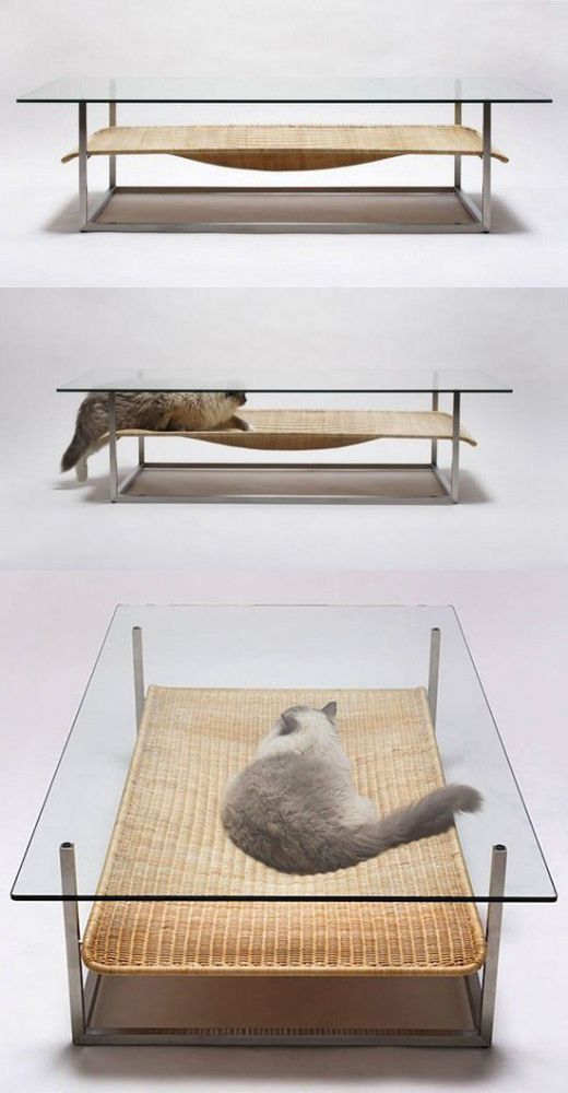 Coffee Table and cat bed in one! Ahahaha! Sitting with friends over drinks and suddenly the cat coming in to snooze. That'd be funny!     I'd love this for my Kitten! #SUMMER OF #SAVINGS: Up To 60% Off! 25 Extremely Awesome #Kitty Furnishings Style Solutions Any Cat Keeper Does need! Get Yours Today!