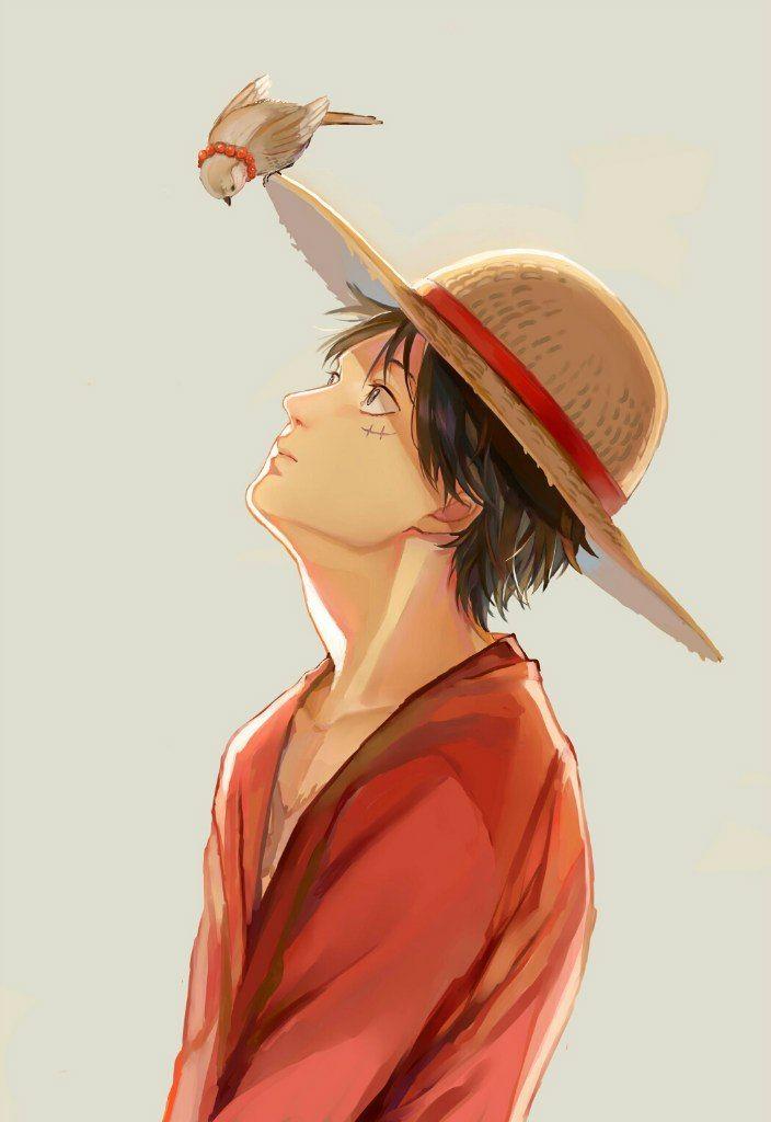 One Piece, Monkey D. Luffy