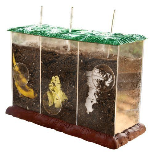 Educational Insights Now You See It, Now You Don't See-Through Compost Container by Educational Insights. Save 38 Off!. $21.68. Includes clear plastic box with faux grass top and aeration holes, three clear-view compartments with magnification spots and thermometers. Allows ability to view the entire decomposition process. Teaches decomposition, composting, life cycles and environmental education. From the Manufacturer                Three aerated compartments enable kids to view t...