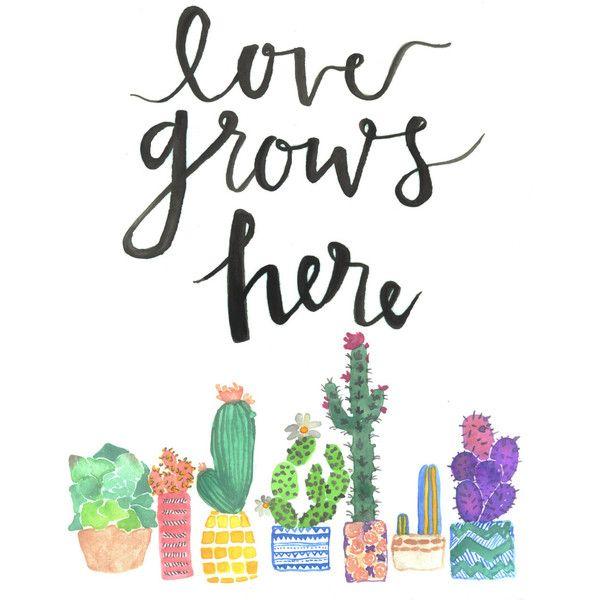 Classroom Decoration Cactus ~ Best succulent classroom images on pinterest