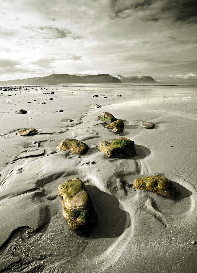 Green stones on a North Wales Beach Photograph  - Green stones on a North Wales Beach, UK