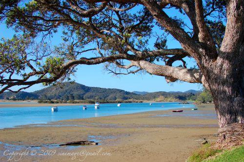 Tutukaka Northland New Zealand